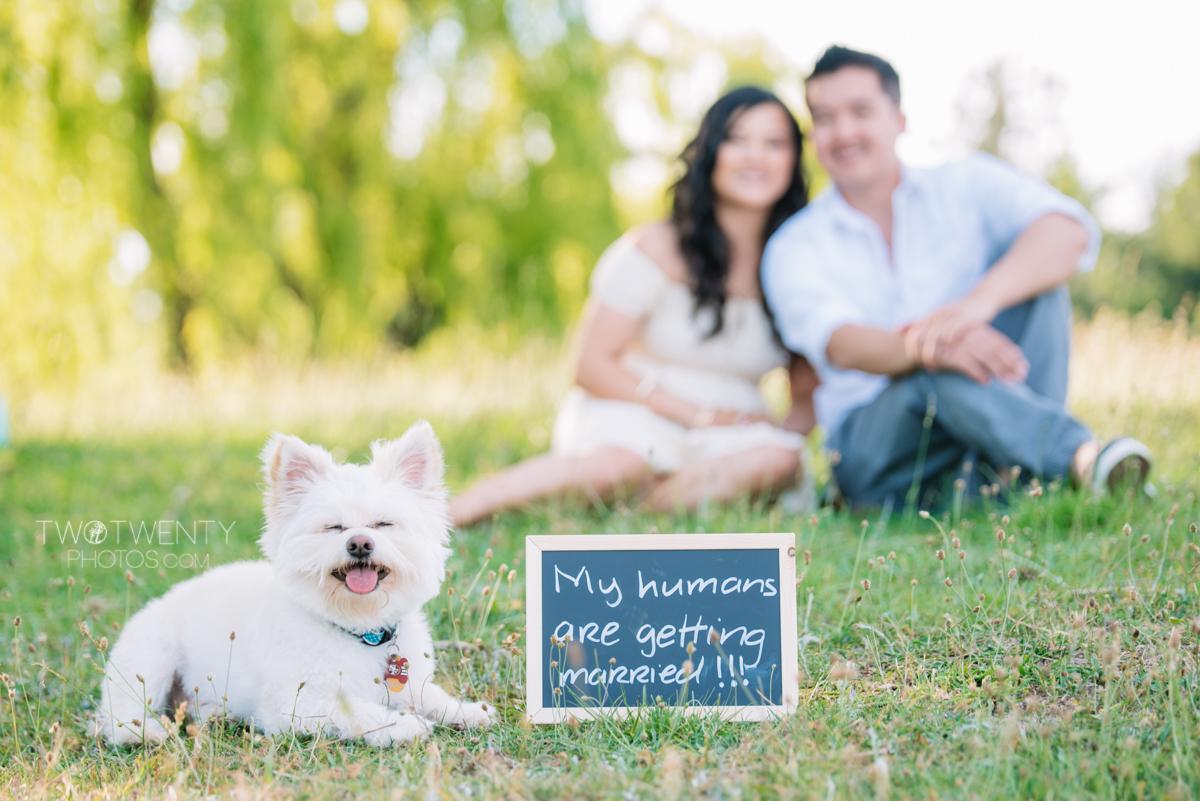 lavender-farm-engagement-wedding-photography-sacramento-california-portrait-photographer-bywater-hollow-farm-canoe-2