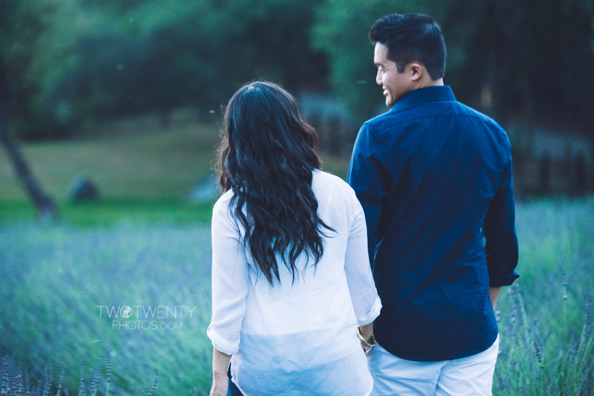 lavender-farm-engagement-wedding-photography-sacramento-california-portrait-photographer-bywater-hollow-farm-canoe-38