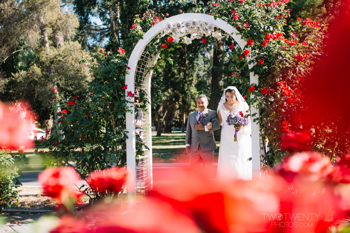 sacramento wedding sterling hotel rose garden-13