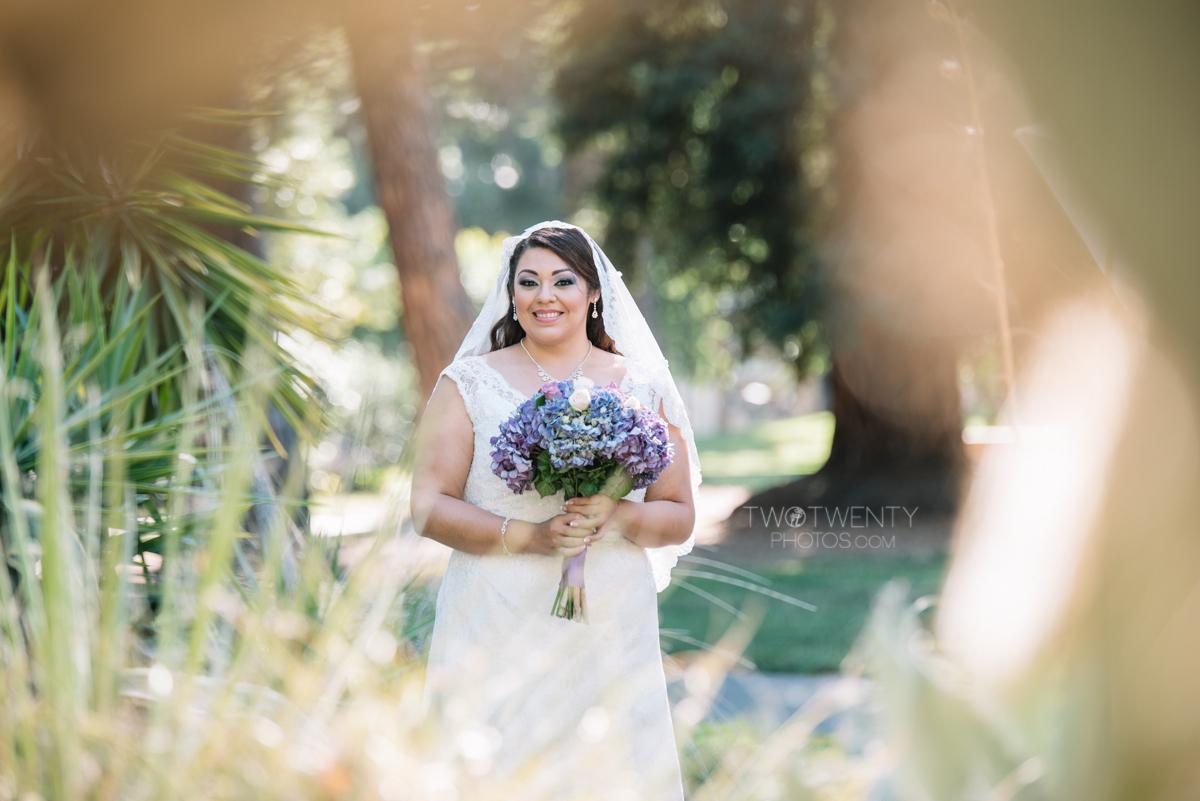 sacramento wedding sterling hotel rose garden-8