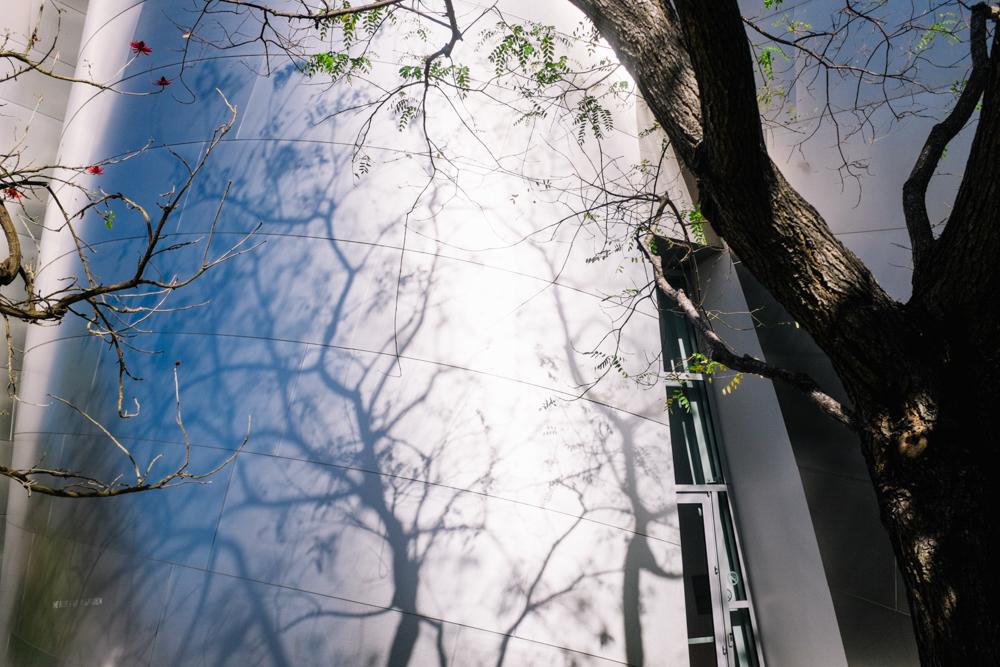 walt disney frank gehry architecture design los angeles california vacation-21