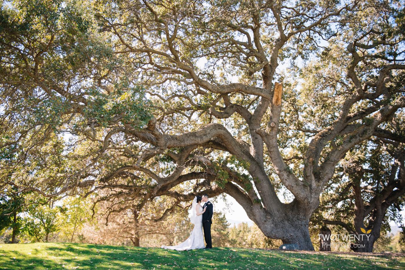 boundary-oaks-golf-course-wedding-walnut-grove-13
