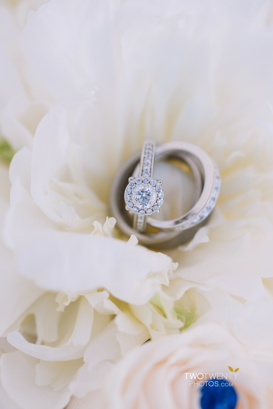 happy-garden-sacramento-wedding-photographer-8