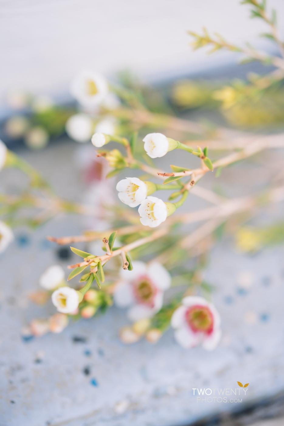 wedding-flowers-detail-acramento-wedding-photographer-3