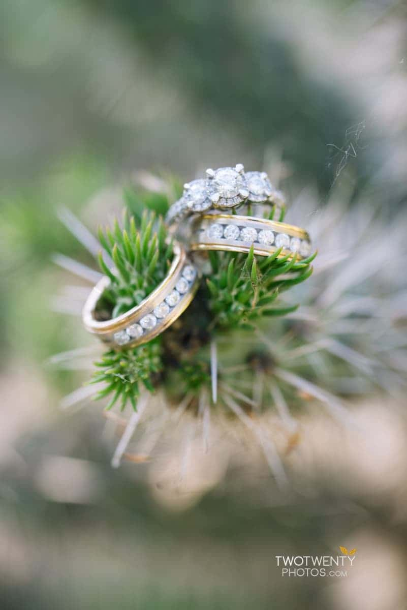 sacramento-capital-park-wedding-engagement-photos-4