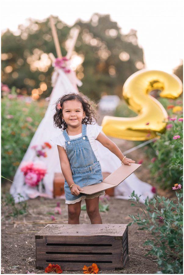 2nd birthday photoshoot sacramento family photographer